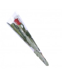 05- ROSA INDIVIDUAL COLORIDAS   (SOMENTE ACIMA DE 100 ROSAS)